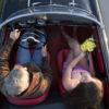 Alfa Romeo Birdseye